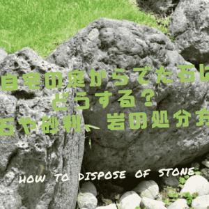 自宅の庭からでた石はどうする?庭石や砂利、岩の処分方法