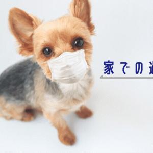 コロナウイルス伝染病予防 子供との家での過ごし方