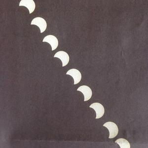 母親と並んで見た部分日食🌞