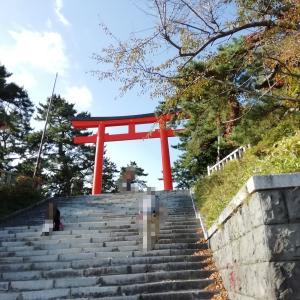 函館山①函館護国神社 この木は桜井識子さんのいう龍の気を浴びている木では?!