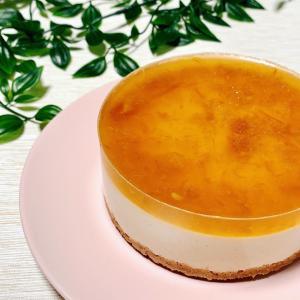 レアチーズケーキをお腹にやさしい材料で作ろう✨
