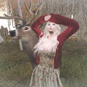 鹿の親子に会いに行ってきました
