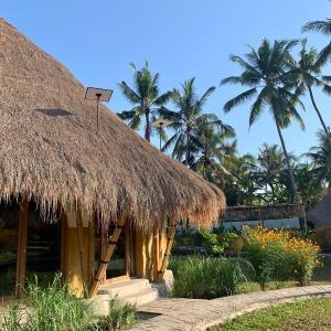 バリ島・Ubudでインターン始めます
