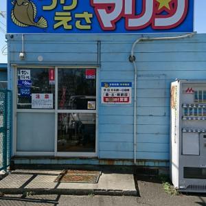 全日本カレイ/宮城県石巻会場レポート