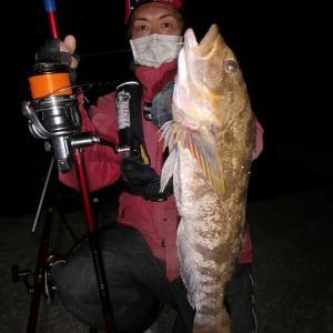 【アイナメ51㌢&大型カレイ連発❗極寒夜釣り釣行記】