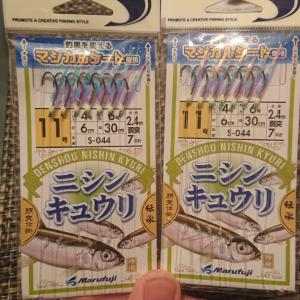 春告魚のニシン釣りへ【アトミックスライダー投】