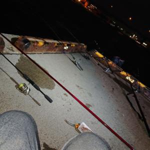 今激熱のクリガニ釣りへ