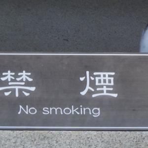 禁煙の札と野良猫