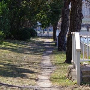 京浜運河緑道公園の風景