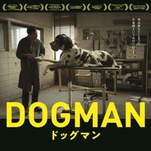 全カット全演技深読み可能な至福のイタリア映画 「ドッグマン」 〈レビュー・感想〉