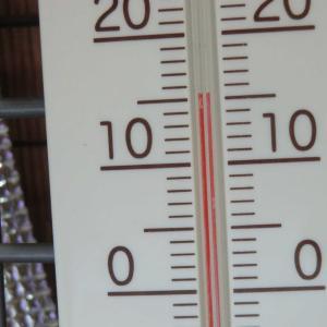 外は春の暖かさ。室内(日陰)はまだ寒い。