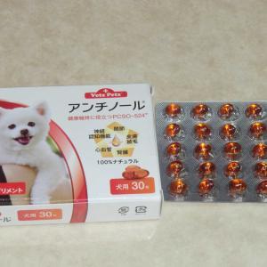 老犬の健康保持のためのサプリメント