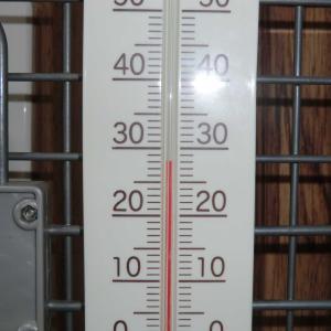 ランキューの暑さ対策の効果は?