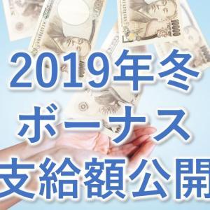 2019年冬のボーナスの支給額(大企業技術系サラリーマン)