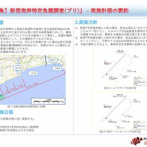 【緊急】新居海岸特定魚種調査(ブリ) - 実施計画書