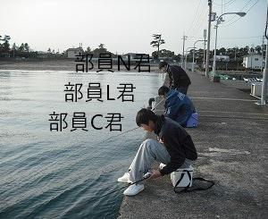寝る前ブログ-2020/02/06
