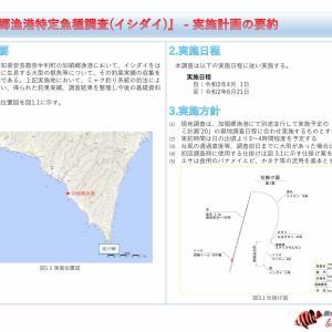 【実施計画書】加領郷漁港特定魚種調査(イシダイ) - 実施計画書【#イシダイ計画】