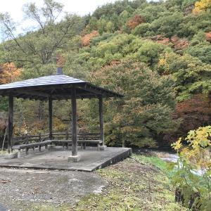 【紅葉】虹と丹藤川渓流の紅葉と自家焙煎珈琲と