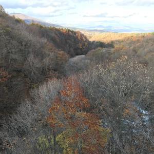 【紅葉】八幡平アスピーテラインと森の大橋【落ち葉】