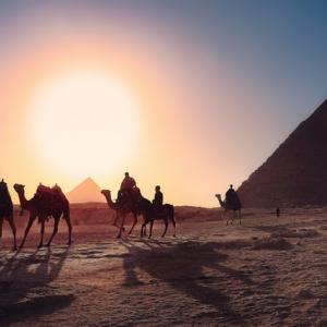 埃及料理 コシャリ料理を訪ねて