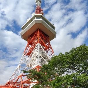 栃木県 東京タワーじゃないよ、宇都宮タワーだよ