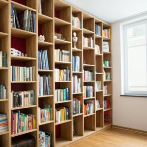 部屋から本棚も消えてすっきり 自分が倒れても