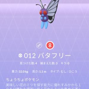 ポケモン紹介 図鑑ナンバー12 バタフリー
