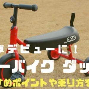 【体験談】ディーバイク ダックスで三輪車デビュー!おすすめポイントをレビュー!