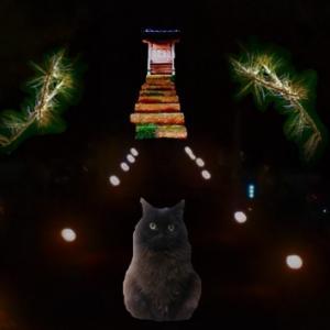 黒猫クーさん ようこそ黄昏森へ