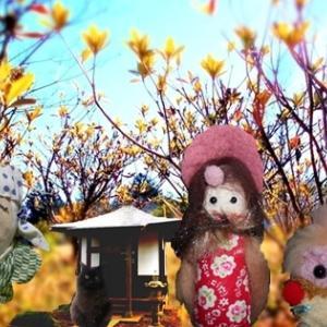 春待つ紅雀     僕のともだち