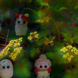 宵に咲く花と精霊    野薔薇の屋敷