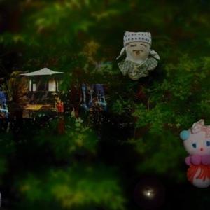 夜の池と精霊    亀さん通信