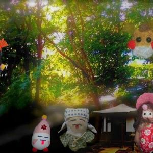 夏の森の小径で君と出会いたかった