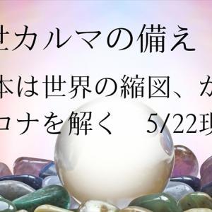 前世カルマの備え ⑧   日本は世界の縮図、からコロナを解く 5/22現在