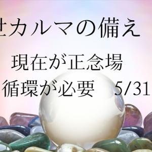 前世カルマの備え ⑩   現在が正念場 愛の循環が必要 5/31現在