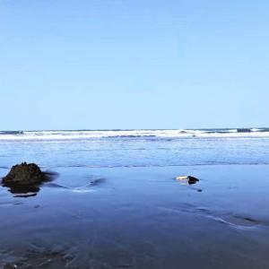 秋のサーフ物語。行きつ戻りつ寄せる波に誘われて。