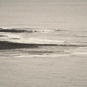 ウインターサーフ物語。今日は立冬。自分スタイル排他的経済水域(EEZ)を引き連れて波を楽しむサーフィン三昧。