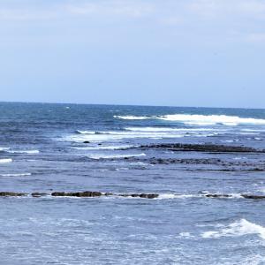 ウインターサーフ物語。「最高気温16度。『小春の日和』にサーフボードを抱えた海辺は、我を忘れる胸オーバーのウネリ波が届く今シーズン最高の渚でした」の巻。