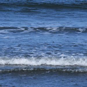 自分流「旅のスタイル探し」。「サーフボードが似合う海辺が織りなす、自然の造形美に魅せられながら、懐かしいサーフトリップに浸ってみる」の巻。