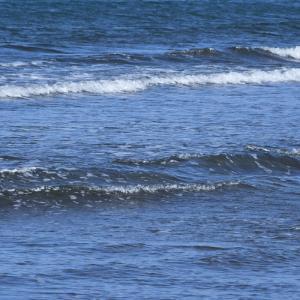 渚のサーフ物語。「小波が刻むリズムに揺られる穏やかな波乗り気分が爽快な梅雨も間近な初夏の海」の巻。