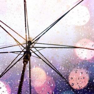 散文夢想「ヒマワリとアサガオが待つ夏の時季まであと少しの頃」。