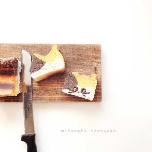 2/16 ㈫ 夕飯 と パン作り