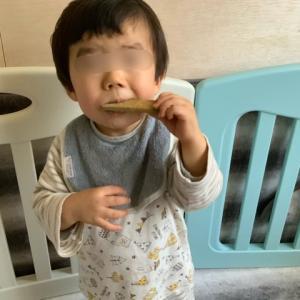 歯固めクッキーでスタイを卒業だぁ!