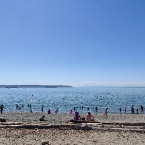 お昼休み、美しい海