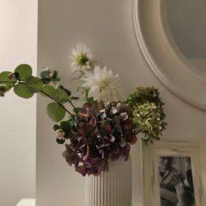 我が家の花と仕事のこと