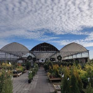 ガーデンセンター