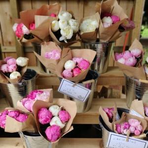 お花と野菜を買いにファームへ