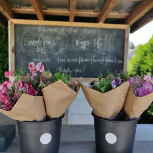 Flower Farm Stand