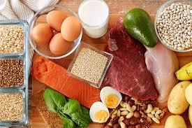 【大事】タンパク質の必要性を述べる【結論:体調安定、心も安定】