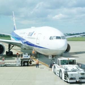 【日本⇔アメリカ】入国制限中の渡航は可能?最新のフライト情報もチェック!